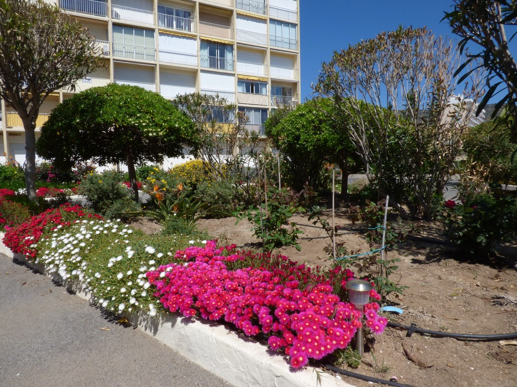 Vente achat appartement cavaliere 83980 for Vente achat appartement